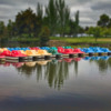 A COLORFUL LINE OF PADDLE BOAT'S: Colorful paddle boat's in Shoreline Lake
