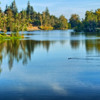 early fall morning on the lake: Vasona Lake, Los Gatos
