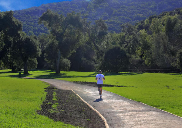 beautiful landscape and jogger