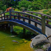 A Japanese bridge